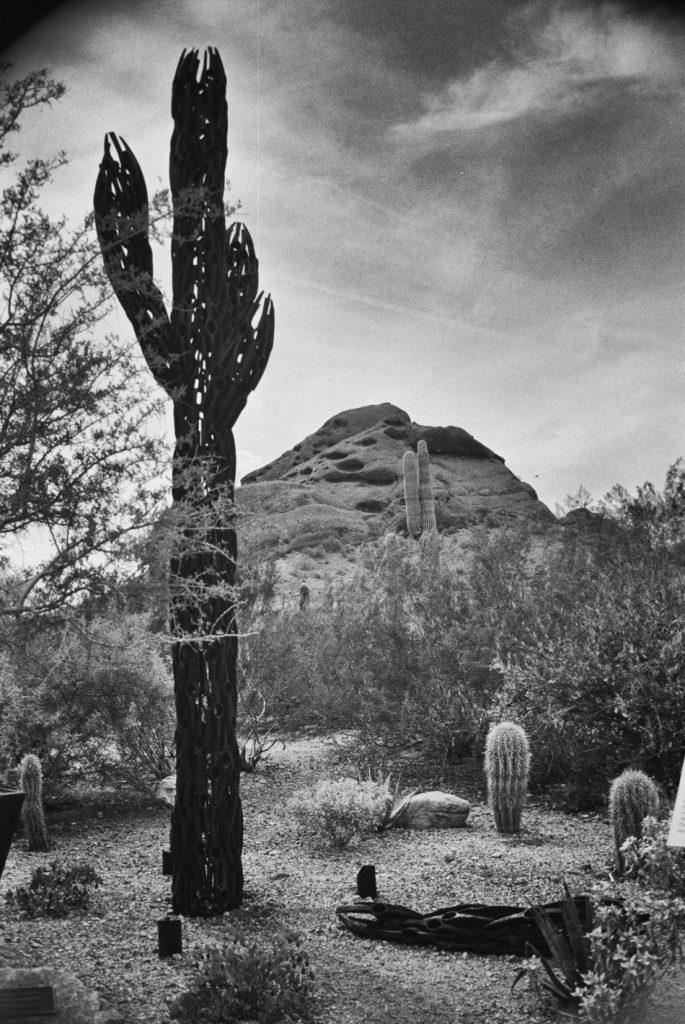 Desert-Monument-950x1421
